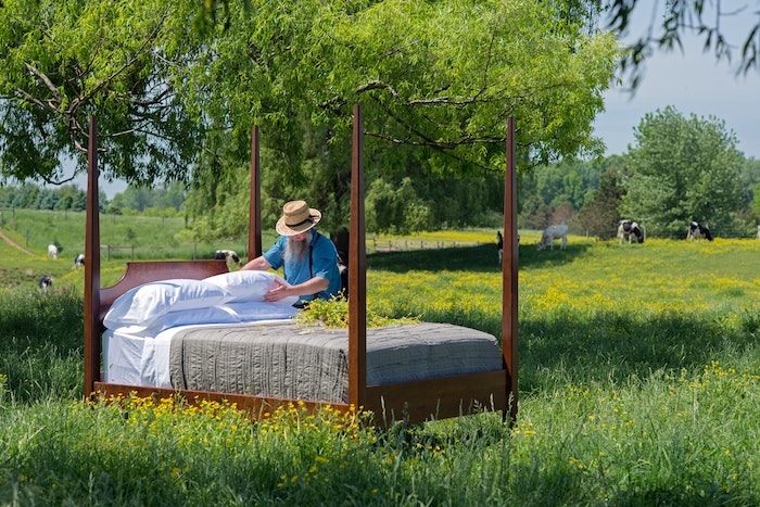 bed in shaded field for vegetables