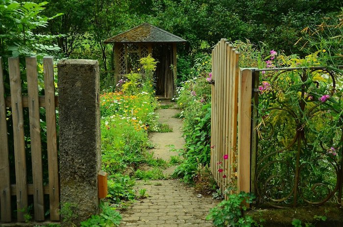 cottage garden through a wooden gate full of flowers that grow in shade