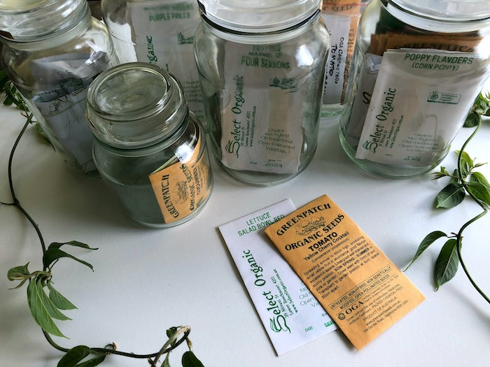 organic seeds for growing vegetables in shade