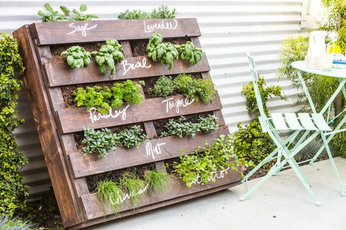 different green herbs in an outdoor vertical garden made from recycled wooden pallets