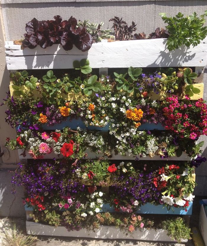 colorful flowers spilling over from a vertical garden made from a wooden pallet
